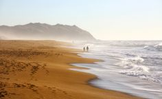 Point Reyes National Seashore (USA).  'Step on the San Andreas  Fault, hike to lonely end-of-theworld  beaches and in winter,  spy whales and elephant seals.' http://www.lonelyplanet.com/usa/california/point-reyes-national-seashore