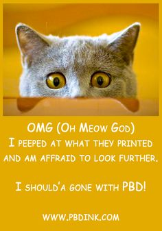 Print Advertising, Print Ads, Commercial Printing, Print Magazine, Magazines, Cats, Books, Animals, Journals