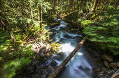 Middle Fork Snoqualmie River Trail -byharris