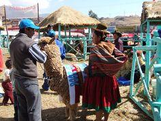 Cusco, Peru State Fair