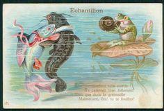 dressed Fish couple love romance & Frog snail Music poem original 1910s postcard