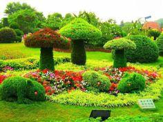 Mushroom topiary