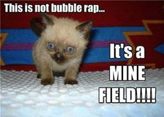 I wish people would learn to spell when they create memes!!! It's bubble WRAP, not rap!!!