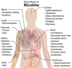 Effects of Nicotine on the Body