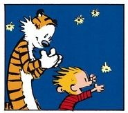 Calvin and Hobbes, chasing fireflies!