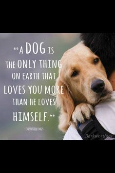 I love this! Pin sent to me by my great friend Candace Brock who loves dogs as much as I do! :-)