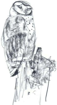 """""""Owl sketch""""/ Peter de Seve"""