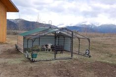 #goatvet says this is a terrific idea- a movable goat pens so goats can be moved to fresh ground frequently and hence avoid worms, coccidia etc