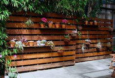 Would be cool to put around the bottom of a deck that is far away from the ground. Stained pallet fence using cavities in pallet for shelves for pots