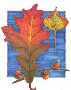 copic leaves drawings easy markers autumn