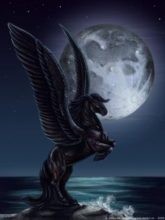 Pegasus in the moonlight | Belle Pégasse