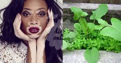 Fantástico! Vitiligo: descubra a cura natural que tem procurado! - # #plantaquecura #vitiligo