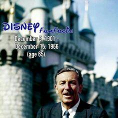 Walt Disney disney fact