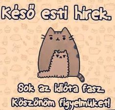 Pusheen Cat, Funny Moments, Memes, Funny Photos, Sarcasm, Schmidt, Funny Jokes, Quotes, Anime