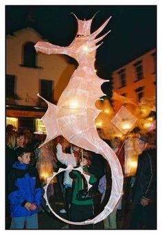 http://gedmurray.com/wp-content/gallery/lantern-parade/cnv00030a-copy.jpg