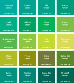 Pantone: Colours introduces children to the ten basic colours and twenty shades of each. Every spread features a colour heading, a monochromatic image and a variety of gridded shades and tints of the same colour. Younger children will enjoy naming th.
