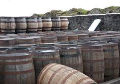 Fässer der Ardbeg Destillerie aus Islay