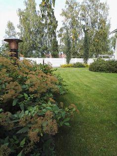 #yksityispiha #loistoangervo #koivuangervo #spiraea #privategarden Private Garden, Stepping Stones, Gardens, Building, Outdoor Decor, Plants, Home Decor, Stair Risers, Decoration Home