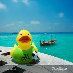 Thanks to @stuindubai for sending us this picture of a #JATravelDuck checking out the view from the White Orchid Restaurant in #JAManafaru in the Maldives.