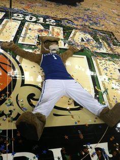 championship wildcat! #UChicSchoolSpirit