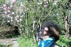 Num dia de sol radioso, uma flor me desafia e de repente fez-se poesia. M S E M