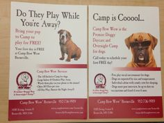 What we offer #doggy #daycare #boarding