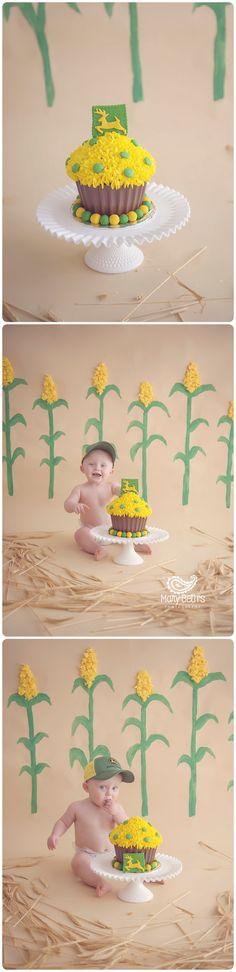 1st Birthday Circus Cake Smash