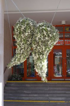 ✿ Rum, Flower Arrangements, Victoria, Flowers, Plants, Floral Arrangements, Rome, Plant, Royal Icing Flowers
