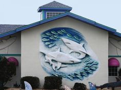 Mako Mike's - Kill Devil Hills, NC. Experience the imaginative underwater decor and fresh seafood, specialty pastas, wood fired pizzas, Angus beef, pork and chicken entrees. Family prices, live shark tank, shark trivia menu for the kids.
