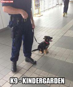 k9 kindergarten