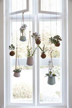 jardin-dentro-de-casa-ideas-01