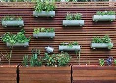 O deck de madeira para jardim vertical é a solução prática que encontramos para cultivarmos nosso jardim particular mesmo não tendo muito espaço para eles,
