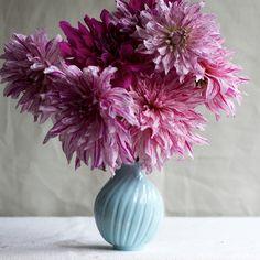 Dahlias in a Frances Farmer Bud Vase Ikebana, Damask Wall, Still Life Oil Painting, Home Comforts, Bud Vases, Art Decor, Decoration, Floral Arrangements, Wedding Gifts