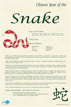 Chinese Zodiac: Chinese Zodiac Year of the Snake. $9.00 from MagCloud