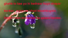 urdu love Love, Amor, El Amor