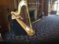 Birmingham harpist Michelle Dalton plays for a Celebration of Life ceremony at The Mount Hotel Harp, Corporate Events, Birmingham, Plays, Celebration, Life, Birmingham Alabama, Games