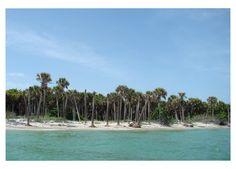 Cayo Costa State Park , Florida - near Pine Island