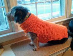 Easy dog sweater free crochet pattern