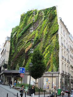 Stunning Vertical Garden Decorates Building In Paris (7 pics) | Bored Panda