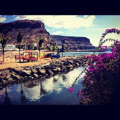 #gran#canaria#puerto#mogan#beach#flowers#water#weather#nature#vacation#sun#tan#amazing - @louimoui- #webstagram
