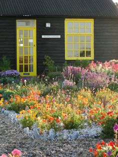 Derek Jarman's garden, on a shingle beach. Dungeness, Kent, England