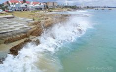 Port Elizabeth shoreline in South Africa Love the sea here Places Ive Been, Places To Go, Visit South Africa, Port Elizabeth, Out Of Africa, Pretoria, Going On Holiday, Africa Travel, Countries Of The World