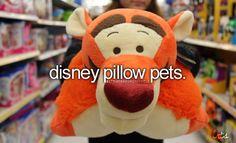 Disney pillow pet. I want one so so so bad.
