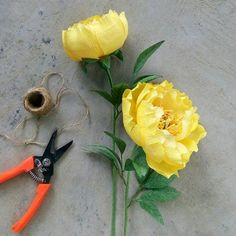 Yellow peonies for a brighter and friendlier workplace. #thepaperblooms