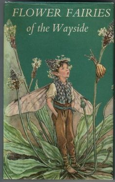 'Flower Fairies of the Wayside', with illustrations by Cicely Mary Barker, published by Blackie c.1970
