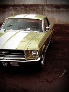 Ford Mustang. My heart and Soul :)