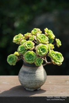 Tried to find the original post to the interwebs but I can't. Kudos to the author though: this planter and that type of succulent make an irresistible set together.