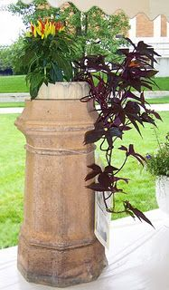 Simplicity is the word for this chimney pipe planted with ornamental pepper and black sweet potato vine. Garden Spaces, Garden Pots, Planting Potatoes, Potato Vines, Potted Plants, Container Gardening, Planter Pots, Landscape, Nature