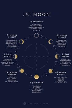 A guide to the lunar cycle- what each of the moon phases are called, what they indicate, and how to be most aligned with them. A guide to the lunar cycle- what each of the moon phases are called, what they indicate, and how to be most aligned with them. Tarot, Magick, Witchcraft, Wiccan, Moon Magic, Lunar Magic, Astrology Zodiac, Moon Astrology, Zodiac Taurus