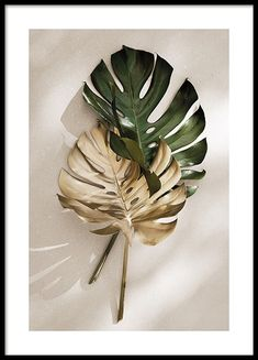 Here you will find floral prints and posters. Stylish posters with botanical prints of colorful plants. Buy botanical posters online from Desenio. Desenio Posters, Kreative Portraits, Gold Poster, Foto Transfer, Protest Posters, Plant Painting, Golden Leaves, Modern Art Prints, Leaf Art